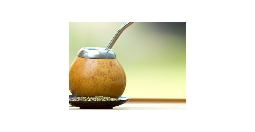 Here's Why Yerba Mate is the Perfect Back-to-School Drink.