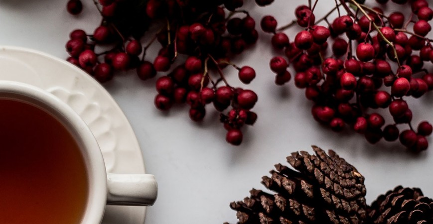 7 Holiday Gift Ideas for Tea Lovers